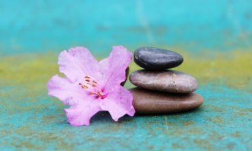 Moć meditacije je u održavanju unutrašnje čistote