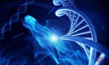 ТHETA Healing i aktivacija DNK