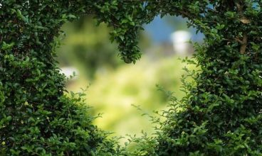 Ljubav, Svetlost i Mir